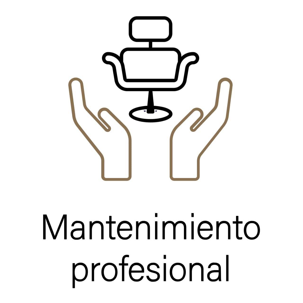 Mantenimiento profesional